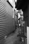20050919_路地16.jpg