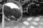 20050920_鏡.jpg