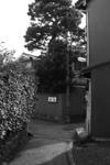 20051030_rojiura05.jpg