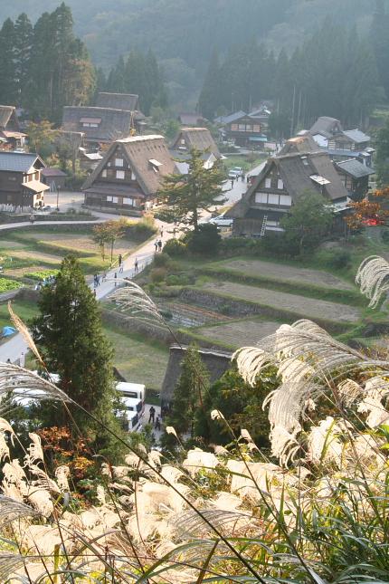 20061029_13.JPG