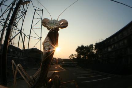 20061105_04.JPG