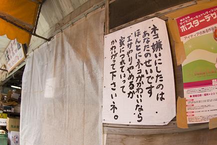 20090720_05.jpg