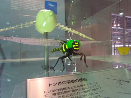 20100131_02.JPG