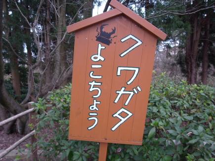 20100131_04.JPG