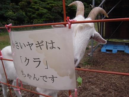 20101024_10.JPG