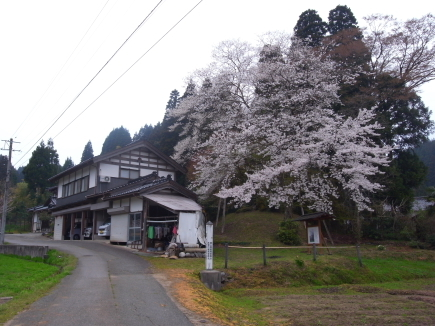 20110422_27.JPG