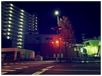 20121110_03.JPG